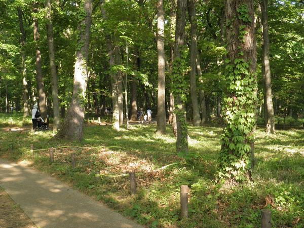 深大寺植物園